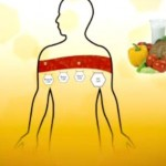 How bios life slim works - simple science